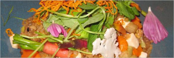 China Poblano Twenty-Vegetable Fried Rice