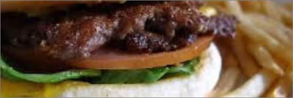 Steak n Shake Steakburger